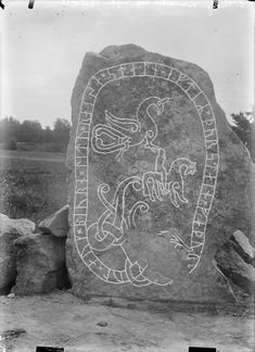 "U448 Harg, Odensala, Uppland. ""Igul och Björn läto resa stenen efter Torsten sin fader."" The inscription says: ""Igul and Björn had the stone raised in memory of Torsten, their father"".Photo from 1910-1911."
