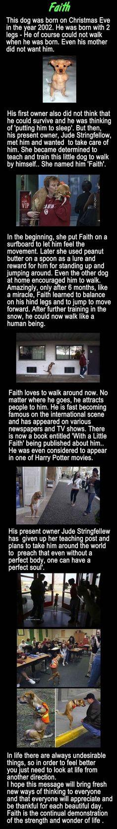 Faith rules!
