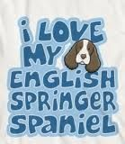 English Springer Spaniel, Fur Babies
