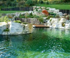Baignade en piscine naturelle, un bassin écologique sans produit chimique Natural Swimming Pools, Natural Pools, Dream Pools, Water Features, New Homes, Landscape, Places, Hot Tubs, Pool Ideas