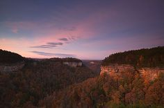 Nature-Conservancy;Tennessee;Cumberland-Plateau;Fall-Scenes;Leaves;Trees;Rock-Fo