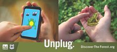 Discover the Forest - Time to Unplug! Discover The Forest, Forest Theme, Emotional Development, Forest Service, Nature Study, Walking In Nature, Educational Technology, Outdoor Fun, Travel With Kids