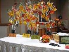 Ignore the ugly fake autumn leaves and the ugly black rocks. The idea would be to get similar white branches to tie the Hawaiian flower place cards on so it looks like a bouquet. If not white branches, what else could work?