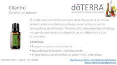 Aceite esencial de Cilantro doTerra Healthy Living Costa Rica - IPC 2309018 doterra.healthylivingcr@gmail.com http://www.mydoterra.com/doterrahealthylivingcr/