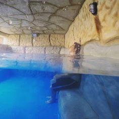 Em algum lugar, pra relaxar 🎵🎵🎵 Descansar com uma paisagem de tirar o fôlego é o que define um final de semana PERFEITO! 💞  Clique e garanta sua vaga na Pousada Magic City!  #hotel #viagem #pousada #descanso #pousada #familia #amigos #pool #paisagem #paraiso #natureza #nature #amazing #piscina #diversao #funtimes