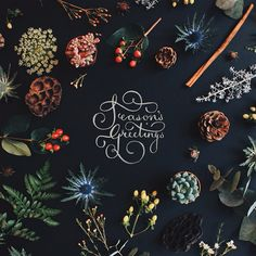 "betype: ""Christmas cards 2014 by Helena Fletcher """