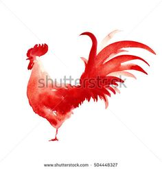 Watercolor red rooster. Chinese new year symbol 2017. Hand drawn illustration isolated on a white - buy this stock illustration on Shutterstock & find other images.