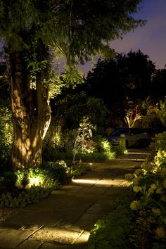 This Was Path Lit By Using Hunza Adjule Spike Spots Installed Into The Borders Each