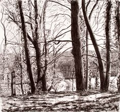 I decided to improve my drawing skills and so everywhere I went I took my sketchbook with me and did drawings in concert halls, while sitting waiting for people and at lunchtime in woods near my art...