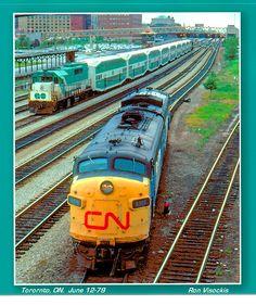 VIA 6516 at Torontno, Ron Visockis photo. Diesel Locomotive, Steam Locomotive, Go Transit, Via Rail, Canadian National Railway, Mermaid Photos, Electric Train, Toronto, Transportation