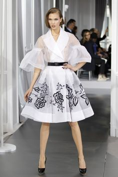 Bill Gaytten for Dior - Paris Couture Week 2012 Fashion Photography Poses, Fashion Photography Inspiration, Fashion Poses, Fashion Outfits, Fashion Week Paris, Sheer Dress, Dress Skirt, Christian Dior, Armani Collection