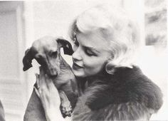Marilyn Monroe with Dachshund friend#Repin By:Pinterest++ for iPad#