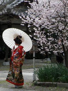 yuikki:  Solo by Matsuura on Flickr.
