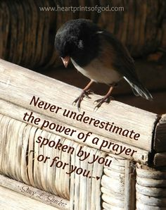 Heartprints of God: The Power of a Prayer~ Say a prayer, even for someone you don't know. Biblical Quotes, Religious Quotes, Bible Verses, Scriptures, Gospel Quotes, Godly Quotes, Say A Prayer, Power Of Prayer, Throne Room