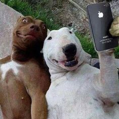 The best selfie of all is taking good care of yourself!  We can help.