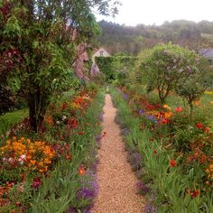 Monet's garden at Giverny Indigo Dreams Spring Aesthetic, Nature Aesthetic, Aesthetic Plants, Flower Aesthetic, Blue Aesthetic, Aesthetic Fashion, Images Esthétiques, Cottage In The Woods, White Cottage
