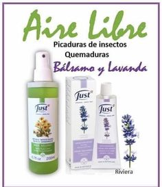 Shampoo, Tips, Frases, Insect Bites, Health Products, Aromatherapy, Advice