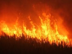 The 12 Worst Forest Fires in U S History