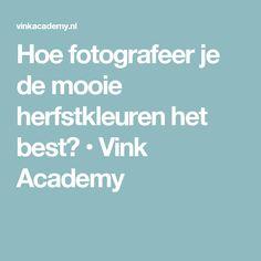 Hoe fotografeer je de mooie herfstkleuren het best? • Vink Academy