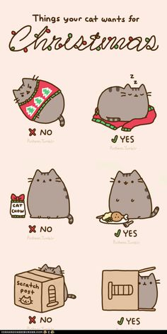 Pusheen's adventures 2013