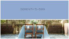 Serenity. Pantone 2016. Pantone 2016, Pantone Color, Rose Quartz Serenity, Color Of The Year, Fonts, Colors, House, Design, Home Decor