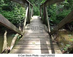 Looking along a wooden footbridge over a creek in the woods.