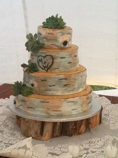 Rustic Birch Bark Wedding Cake - Fondant Birch Bark Wedding Cake - like this with the succulents