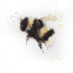 Contemporary print of my original watercolour BUMBLE BEE 2 Printed using epson Chroma K3 pigments onto archival quality 190 gsm paper.