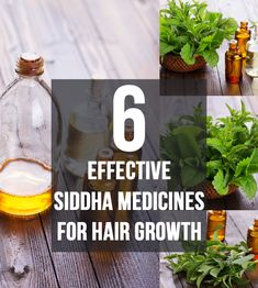 Did you know that Siddha Medicine for hair growth is one of the most ancient systems of medicine known to mankind? Know 6 Sidha effective medicines for hair growth here