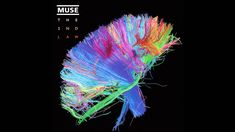 """""""Free me Free me Free me from this world. I don't belong here,  It was a mistake imprisoning my soul. Can you free me,  Free me from this world.""""  Muse- Explorers"""