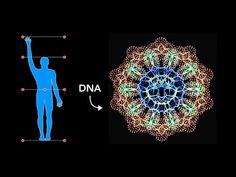 How Sacred Geometry is embedded in Your DNA - Secrets of Geometric Art Flower Mandala, Mandala Art, Z Dna, Flower Of Life Tattoo, Sacred Geometry Tattoo, Fineliner Pens, Fibonacci Spiral, Geometry Pattern, Pen Sets