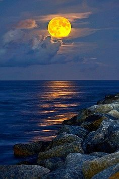 Mariner's Moon