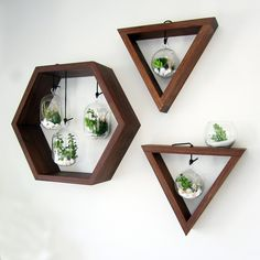 The Black Walnut Hexagon Terrarium will bring warmth and color to any room and make a lovely addition to your home. The pieces pictured above are from my personal home and they look great! Each piece is sealed with a mixture of mineral oil and wax to let the true beauty of the walnut shine. The glass terrariums come with a leather lace to hang from inside the hexagon. Two key holes on the backside allow for a flush mount against your wall so that no hardware may be seen. I make these pieces…