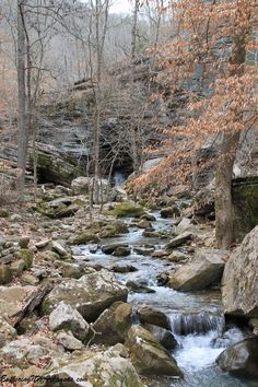 Clark Creek -- Lost Valley Trail - Via ExploringNWArkansas.com