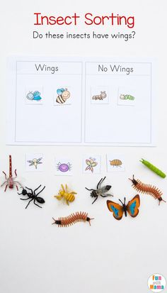 2 Worksheets All About Arthropods Preschool Insect Theme Sorting Worksheet Bug Activities √ Worksheets All About Arthropods . 2 Worksheets All About Arthropods . Preschool Insect theme sorting Worksheet Bug Activities in Preschool Themes, Preschool Lessons, Preschool Learning, Kindergarten Worksheets, Preschool Crafts, Kids Crafts, Teaching, Spring Preschool Theme, Creative Curriculum Preschool