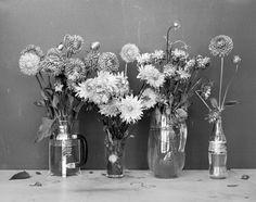 Спокойный, умиротворяющий черно-белый мир Томаса Хаузера (Thomas Hauser)