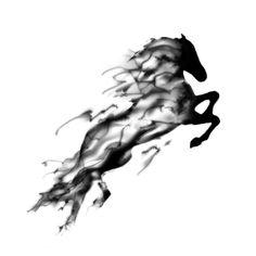 Dark Horse - Personally Designed Tattoo - Stéfane Guévremont