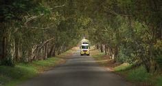 Paving the way. #trucks #fleet #solutions #linehaul #freight