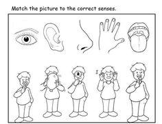 5 senses worksheet for kids (13)  |   Crafts and Worksheets for Preschool,Toddler and Kindergarten