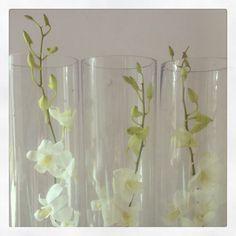 Orchid in cylinder vase- wedding centre piece