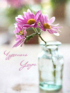 Чудесного Утра - Поздравительные открытки на все случаи жизни! - Bagima