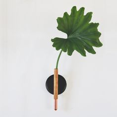 Make a bentwood + copper bud vase in a few easy steps with this tutorial from Annabode!