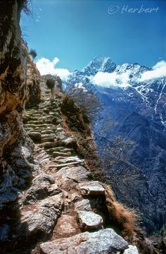 How Brave do you have to be to walk these steps..........Annapurna, Himalayas, Nepal Denise to Viv:: Did I walk these steps??