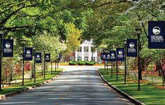 Image Detail for - Georgia Southern University Advantage