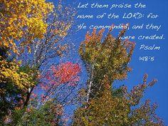 Psalm 148:5