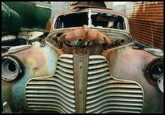 1940's Grille