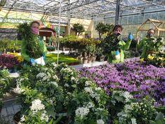 🌺🌱 SONDERÖFFNUNGSZEITEN 🌱🌺 in der Blumenwelt Mils bei Hall!  🔸 Sonntag, 19. & 26. April 🔸 Freitag, 1. Mai 🔸 Sonntag, 3. & 10. Mai  🕘🕕 Jeweils von 9:00 bis 18:00 Uhr  Unsere Glashäuser sind voll mit bunten Blumen, Kräutern, Gemüse und vieles mehr, auch unsere Mitarbeiter sind schon bereit für dich! 🌺🌳🍓🍊🍅  Wir freuen uns auf deinen Besuch bei uns im Blumenmeer! 🤩🤩 Natürlich immer noch unter Einhaltung der behördlichen Auflagen! 1 Mai, Around The Worlds, Instagram, Videos, Plants, Pictures, Colorful Flowers, Overlays, Friday