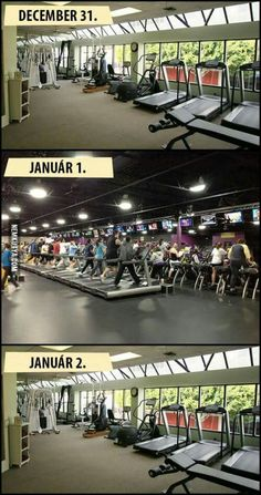 New Years Resolution Gym Humour, Workout Humor, Bizarre Pictures, Best Funny Pictures, Gym Memes, Move Your Body, Cute Quotes, Academia, Puns