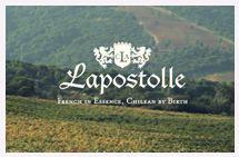 MULTIMEDIA - Chilean Wines   Colchagua, Lapostolle Red Blend, Cuvee Alexandre, Borobo.