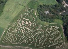 Now that's dedication, a Si Robertson maze